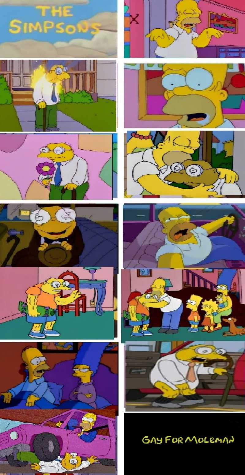 When Homer finds out that Hans Moleman is FAH-LAMING (just the way he likes 'em!), he starts a relationship so intense he wants Hans to join the family. Marge doesn't approve, so Homer breaks it off in the worst way possible.